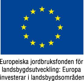 EU-flaggaEuropeiskajordbruksfondenfrgJPG